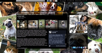 Pets Electronic Press Kit Theme