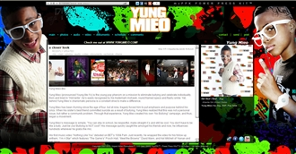 *Yung Mieo Electronic Press Kit Custom Design
