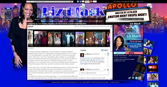 *Liz BLack Electronic Press Kit Custom Design